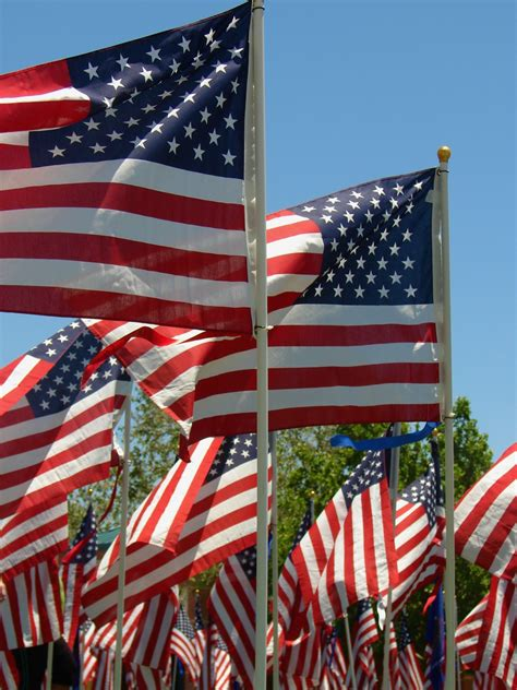 american flags on memorial day free stock photo public domain pictures