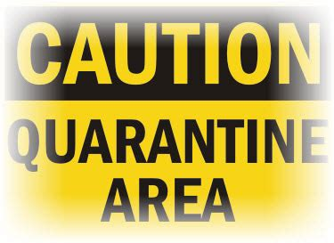 quarantine boat definition what does it mean to go through quarantine wilcox law