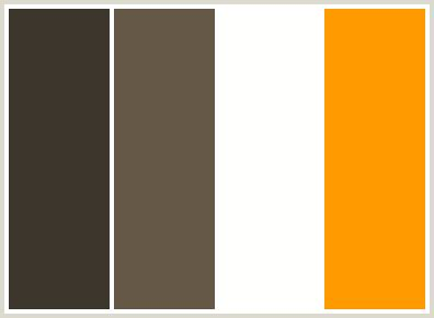 brown color combination colorcombo253 with hex colors 3d362d 665847 fefffd ff9900