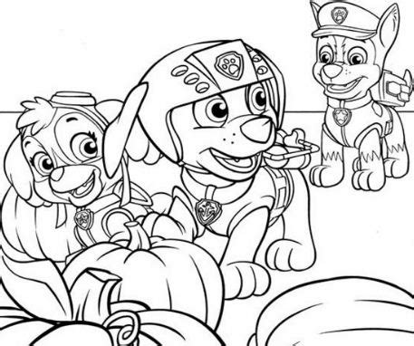 paw patrol coloring pages full size full size printable coloring pages paw patrol zuma full