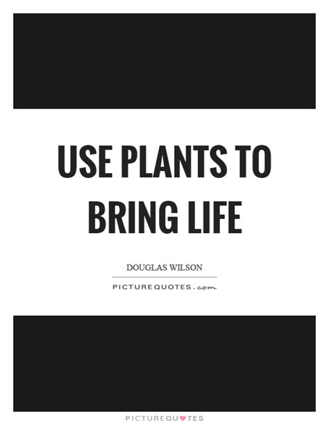 the best plants to bring life to your bathroom use plants to bring life by douglas wilson like success