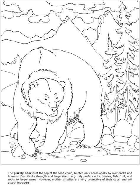 coloring pages of dangerous animals how to draw dangerous animals