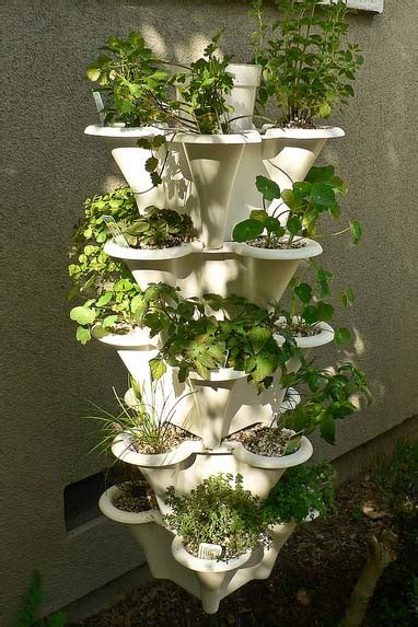hydroponic tower choose    started  ease
