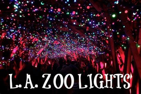 lights of the discount tickets how much are zoo lights tickets la zoo lights 2015