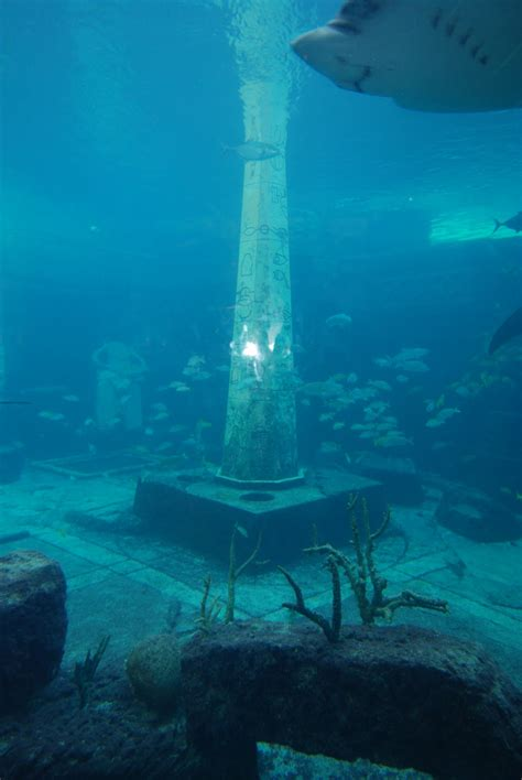lost cities real atlantis the lost city www imgkid the image