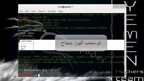 sql injection tutorial kali linux sql injection with kali linux youtube