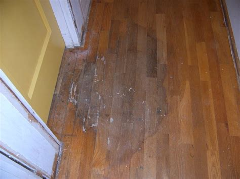 oregon hardwood floors oregon wood floor repair sterlingwoodfloors