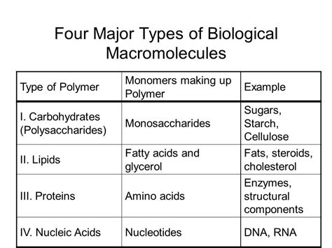 carbohydrates name of monomer four major types of biological macromolecules ppt