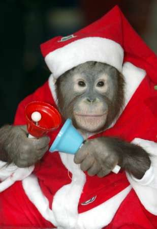 merry christmas suddenly atheist