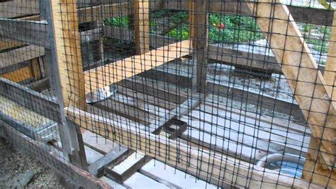 gabbia trappola per uccelli progetto quot acme quot gabbia trappola per galline indipendenti
