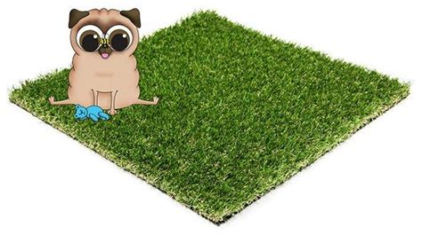 best grass for dogs diy artificial grass top turf artificial grass artificial grass cleaner