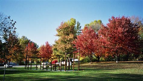 Bloomington, Fall '02. Bryan Park