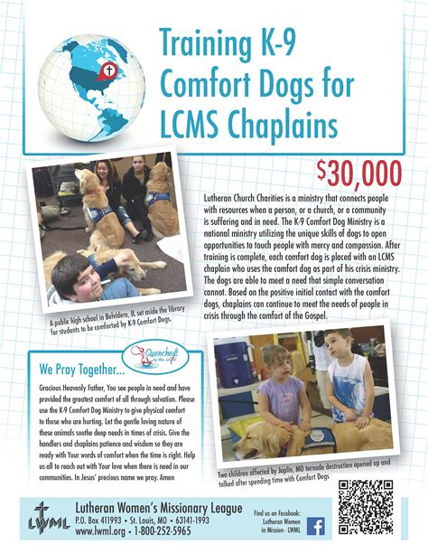 comfort pet certification training k 9 comfort dogs lutheran women s missionary league