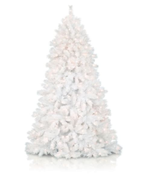white christmas trees treetopia uk