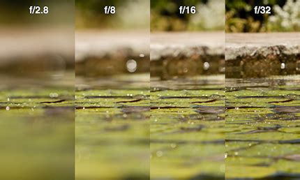 quick tip: aperture and depth of field | r. mabry photography