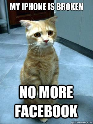 Broken Iphone Meme - my iphone is broken no more facebook sad cat blog
