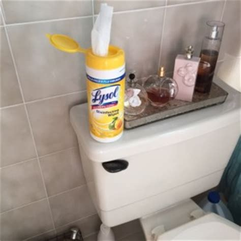 lysol disinfectant spray  wipes blogher