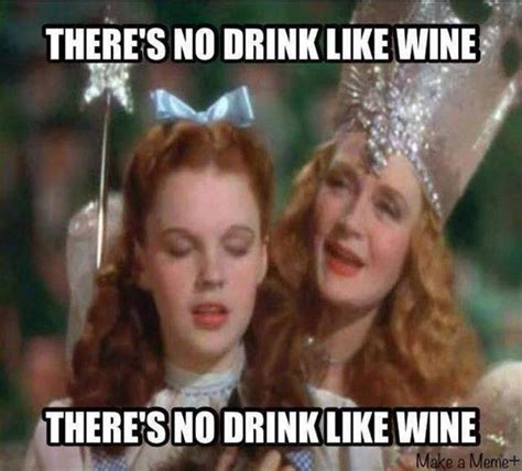 Funny Wine Memes - funny pictures of the day 83 pics