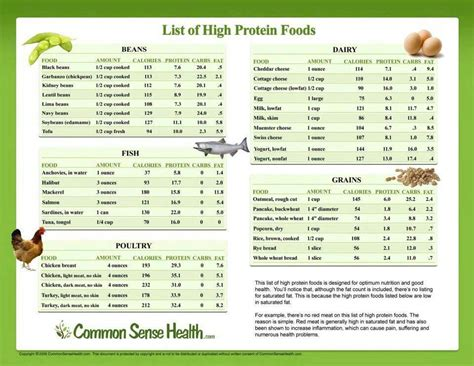 Pdf Diet Veggies Ignite by List Of High Protein Foods Healthy Munching