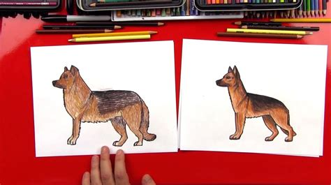 how to draw a german shepherd dogs archives for hub
