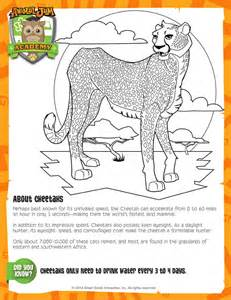 Galerry animal jam eagle coloring page