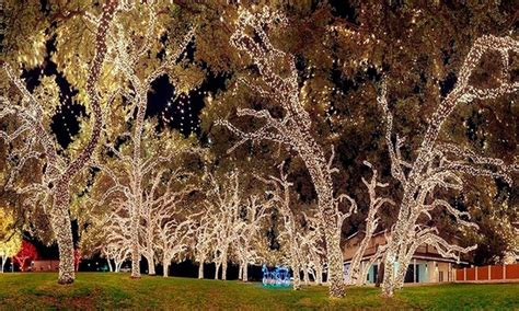 fairy led lights canada led fairy lights canada roselawnlutheran