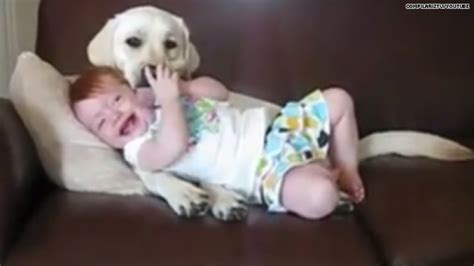 babies laughing at dogs d aaww babies laughing at dogs is everything hlntv