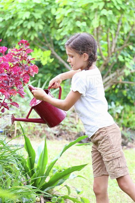 girl watering flowers girl watering plants in garden with red watering can