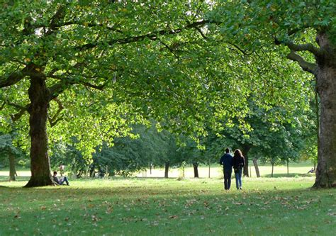 background green park london last gasp of summer green park london urban75 blog