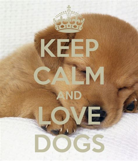keep calm and puppies keep calm and dogs poster giovanna keep calm o matic