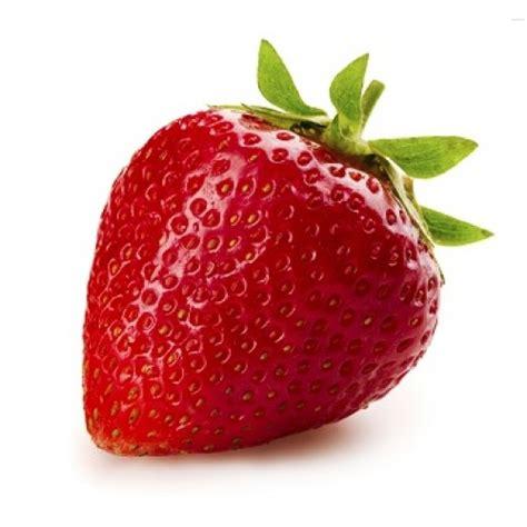 Jual Bibit Strawberry Di Lung benih strawberry 20 biji non retail bibitbunga