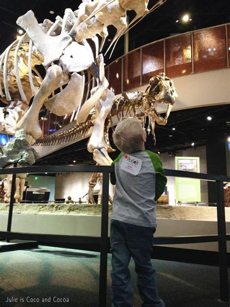 perot museum and giveaway