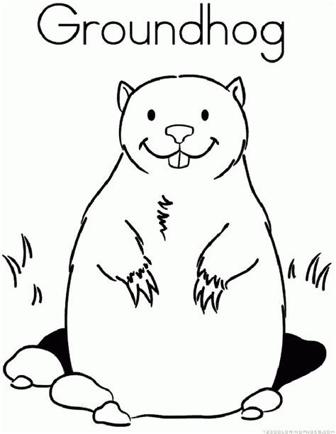 Groundhog Woodchuck Coloring Pages Groundhog Coloring Page