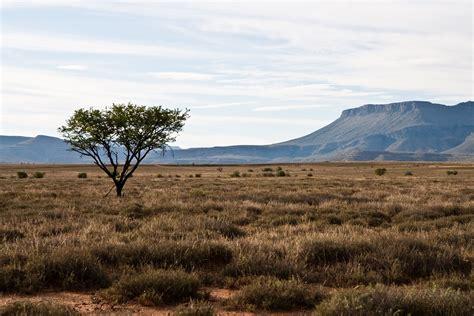 Landscape Pictures In South Africa Sudafrica Nel 2016 Non Verr 224 Ucciso Neppure Un Leopardo