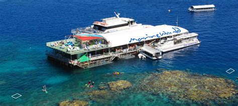great barrier reef pontoon great barrier reef pontoon great barrier reef dive