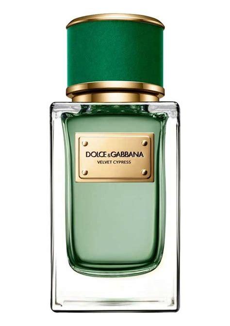 Parfum C F Perfumery best 25 dolce and gabbana perfume ideas on light blue dolce gabbana dolce light