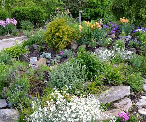cheery small rock garden ideas small rock garden design