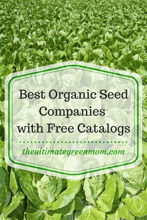 Gardening Catalogs Seed Companies by The Best Organic Seed Companies With Free Catalogs The