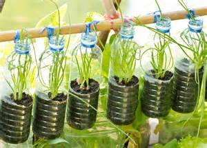 Water Bottle Vertical Garden Grow Up How To Design Vertical Gardens For Tiny Spaces