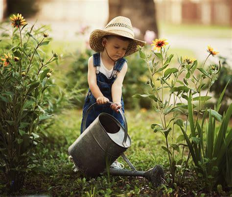 irrigare il giardino irrigazione giardino consigli per risparmiare arreda il