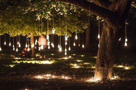hanging tree lights backyard lighting pinterest