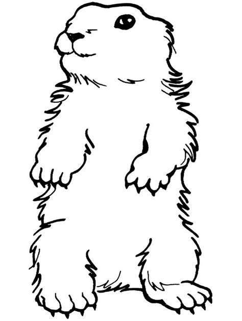 groundhog printable coloring pages