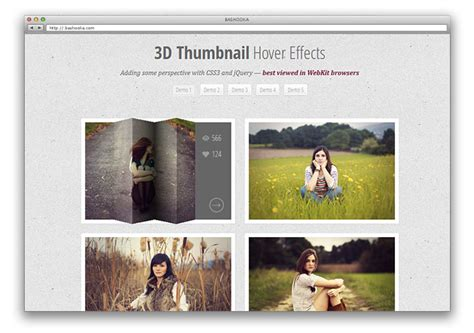 css layout effects 10 css3 image hover effect tutorials web graphic