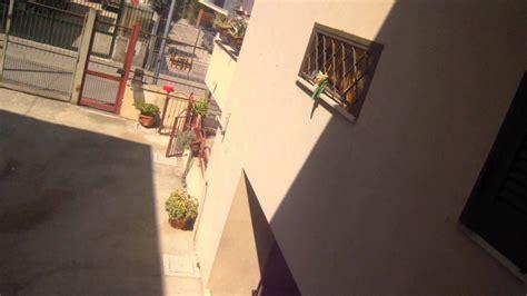la vicina di casa amo la vicina di casa h 224 h 224 h 224