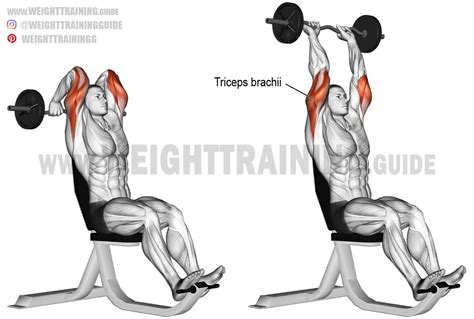 bench press with ez curl bar overhead ez bar triceps extension aka seated french press