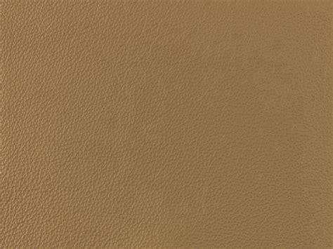 color light brown light brown color swatch pixshark com images