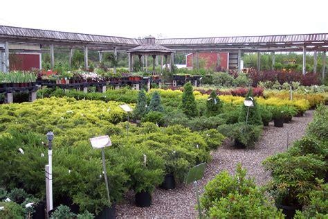 Garden Shop Garden Shop Woodstream Nurseries Clarence Center Ny