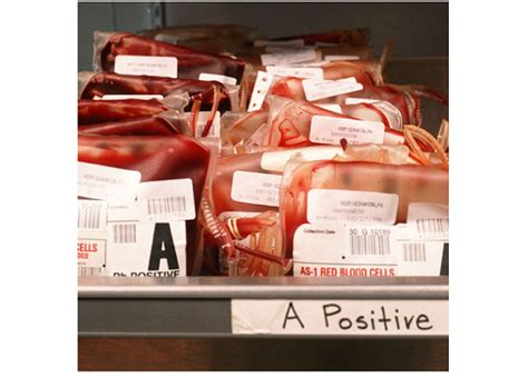 5 Things To Make You See Blood 5 things your blood type says about you make sure you
