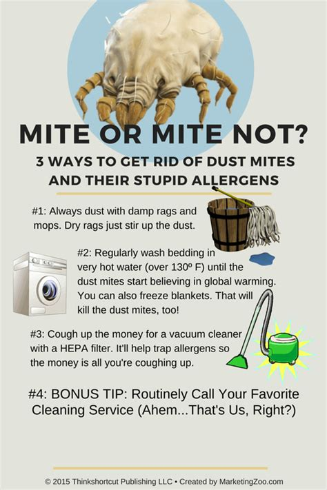 how to get rid of dust mites in bed does cleaning carpets kill dust mites carpet vidalondon