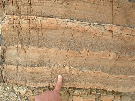 graded bedding sedimentary structures